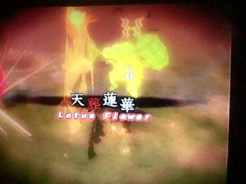 """Celestial Burial Lotus"""
